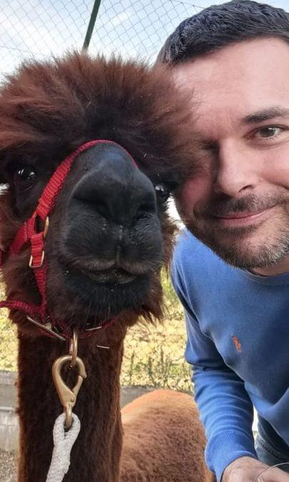 L'alpaca e Saverio Tommasi